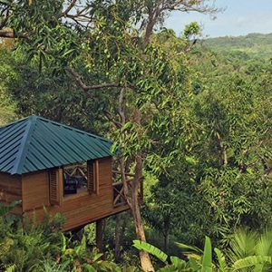 """La Cara de Indio treehouse at El Yunque Hotel"""