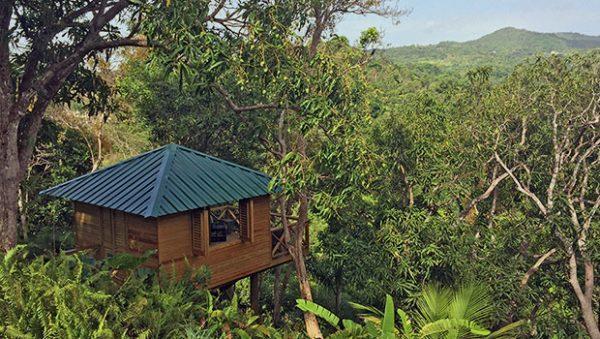 """""""La Cara de Indio treehouse at El Yunque Hotel"""""""